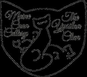 7673-logo-ypsilon-nw